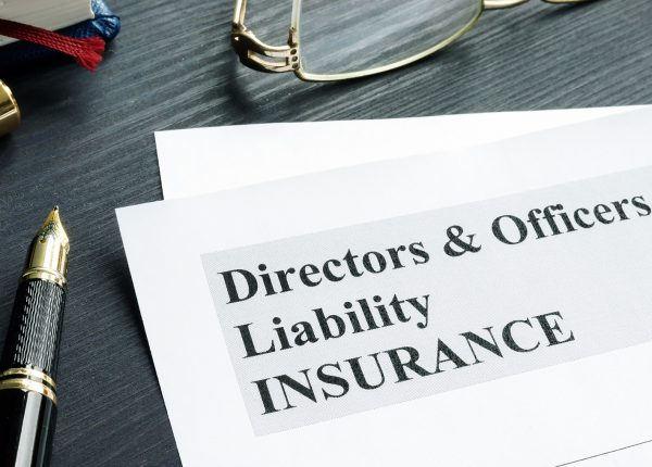 palmyri-D&O-liability-insurance